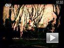 2009宝马7系广告背景歌曲Sigur Ros - Hoppipolla MV